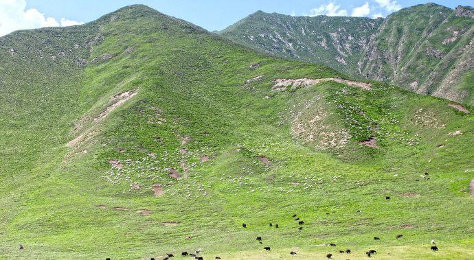 卓尔山红绿相间的土地,宛如大地画布,交纵成一幅巨大的油画