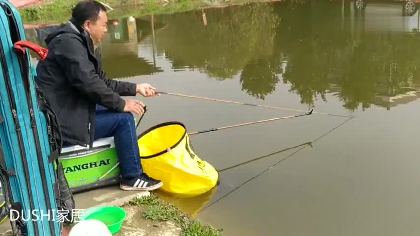 钓友酷爱短杆钓鱼手抓鱼竿轻轻一挥提竿接连上鱼感受鱼线拉力