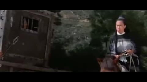这部武侠老片,一招一式过目难忘,场面火爆高能,很多人看不腻
