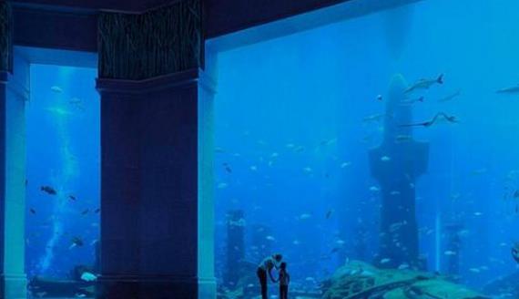 土豪耗资近1亿,在酒店中建最大鱼缸,每年吸引数十万游客