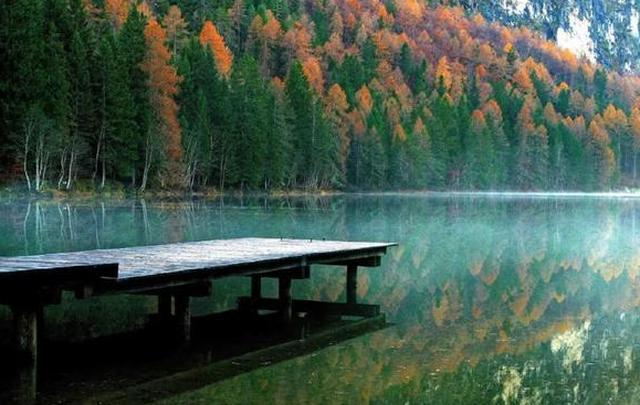 八首诗词说清秋:一声梧叶一声秋,一点芭蕉一点愁
