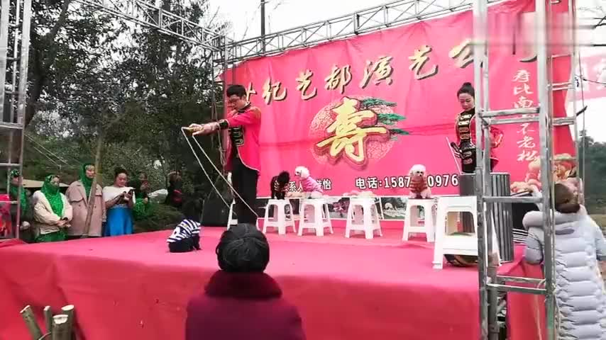 实拍四川农村的狗狗杂技表演炫酷呆萌吸引了全场观众的眼光