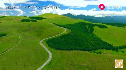 实拍日本原生态草原一望无际甚是美丽
