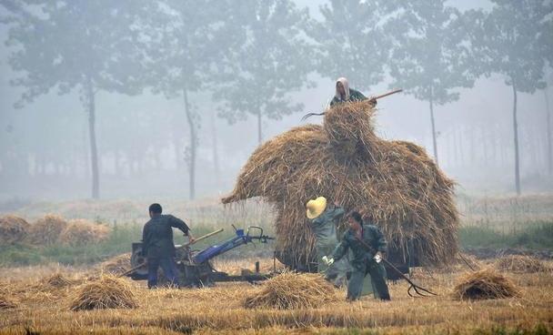 带孩子去乡下,体验农村辛苦劳动,能锻炼孩子吃苦、拉近亲子关系