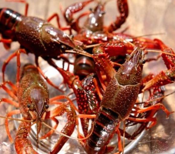 继小龙虾价格跳水后,大闸蟹也紧接着卖不动了?网友:凉凉!