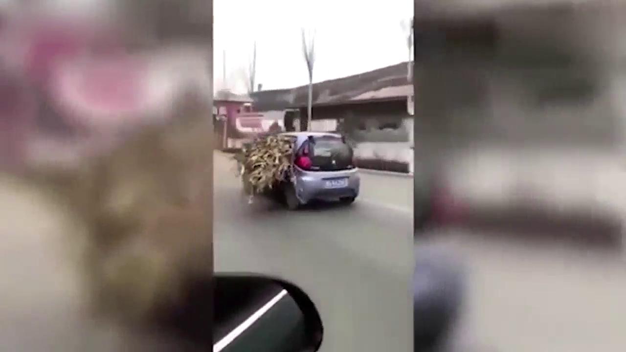 实在没办法,司机用奔奔来拉秸秆