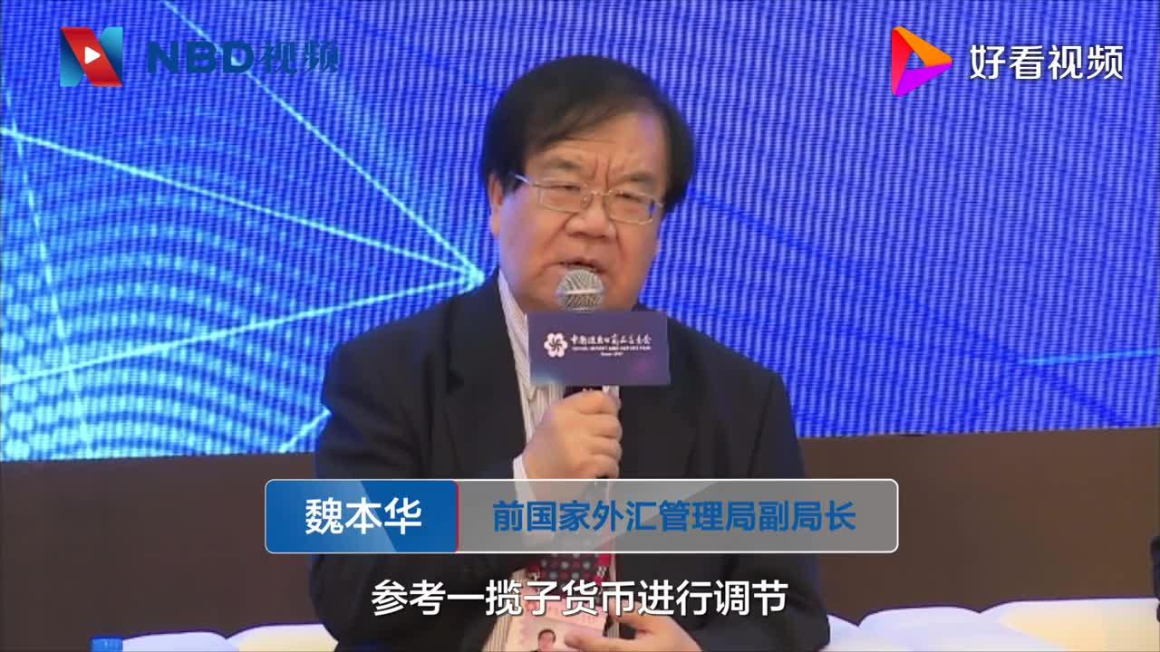 前国家外汇管理局副局长魏本华人民币汇率形成是一种市场机制