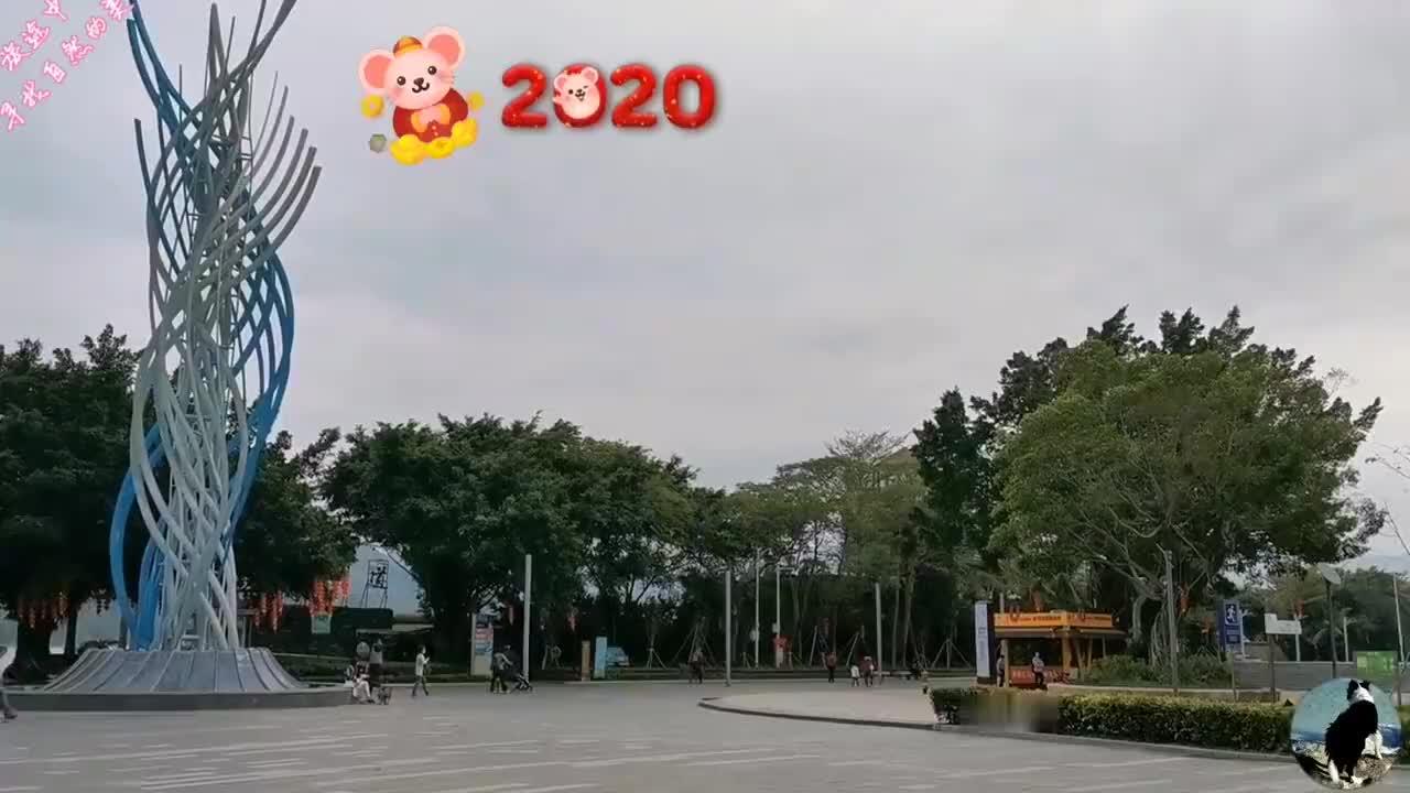 深圳沙头角走沿海栈道看海景逛迎春花市