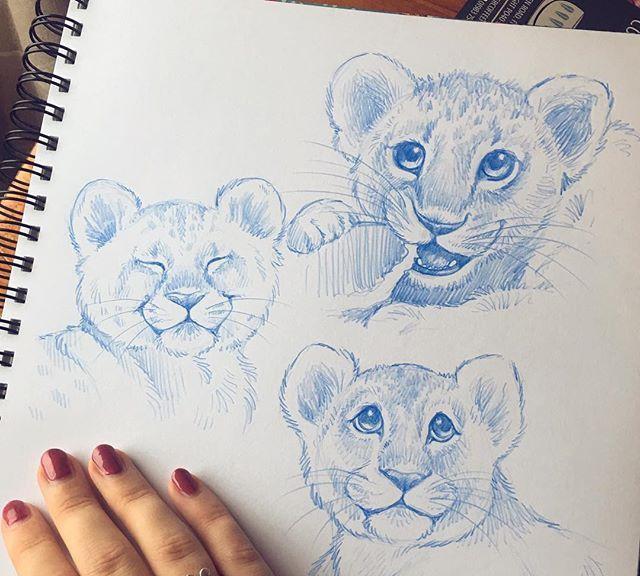 手绘小动物线稿,画风简洁有趣,随时可以画