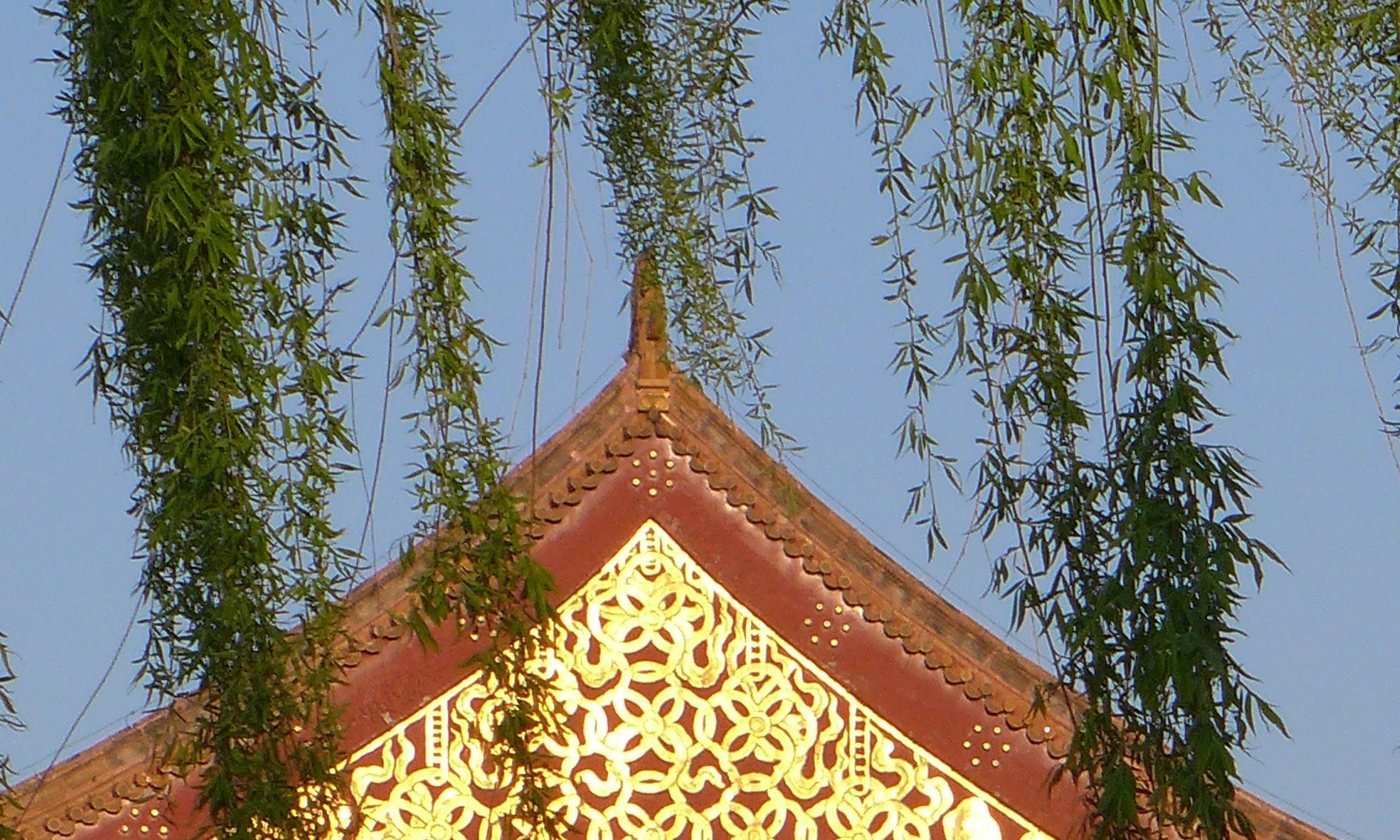 云南人眼中北京城里金碧辉煌的故宫博物院