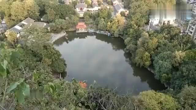 柳州古八景南潭鱼跃