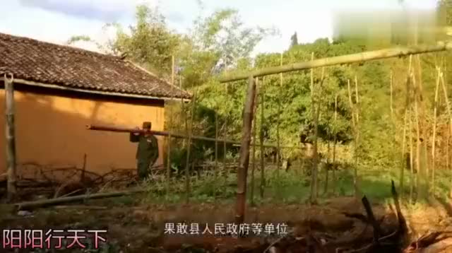 缅甸果敢地区军民合作大力发展种植业和养殖业农副产品生产