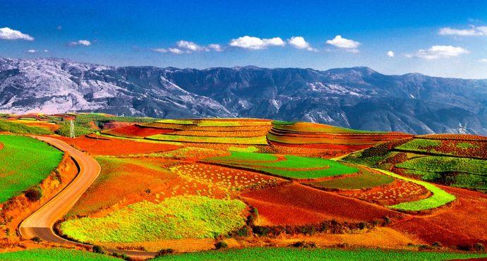 东川红土地景区,是世界上除巴西外最有气势的红土地