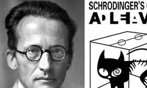 """""""薛定谔的猫""""究竟有多恐怖?衍生出来的理论,可以窥探宇宙"""