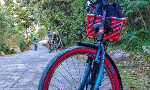 打飞的、坐轮渡,就为了去世界顶级的海滩骑自行车