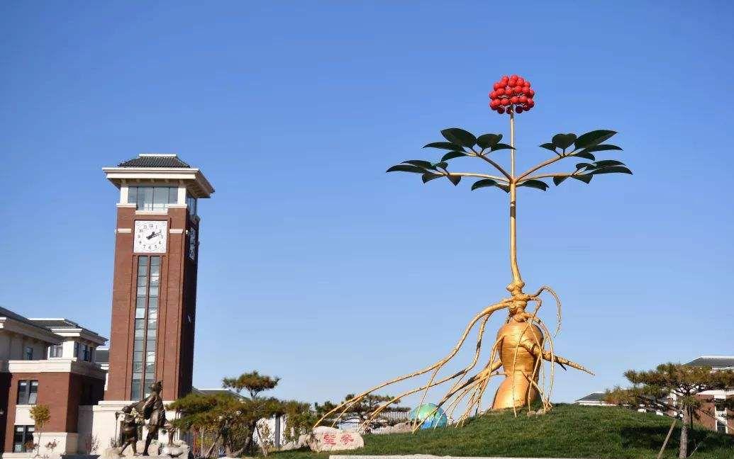 天津市大学十强榜单(世界十大权威大学排行榜综合排名)