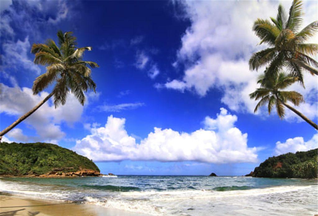 多米尼加的海岛,日出的光彩把整个大地照耀得异常夺目