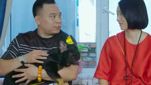 乡村爱情:王木生给王大拿介绍法斗,说这狗是身份的象征