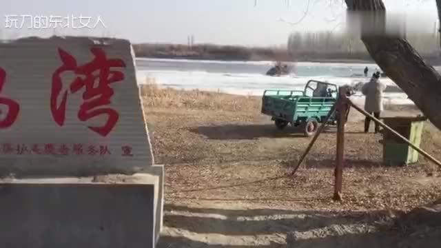 新疆天鹅栖息地开都河正在慢慢上冻天鹅湾却非常热闹