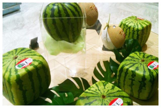 日本有方形西瓜,美国有拇指西瓜,看到中国西瓜,网友:大开眼界