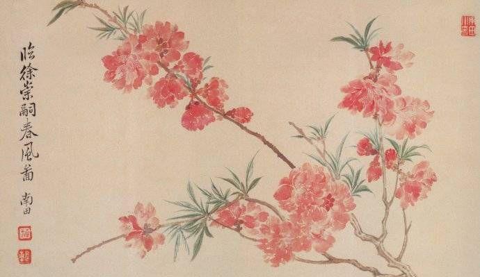 真正的视觉盛宴!邀您共赏恽寿平笔下的花之神采