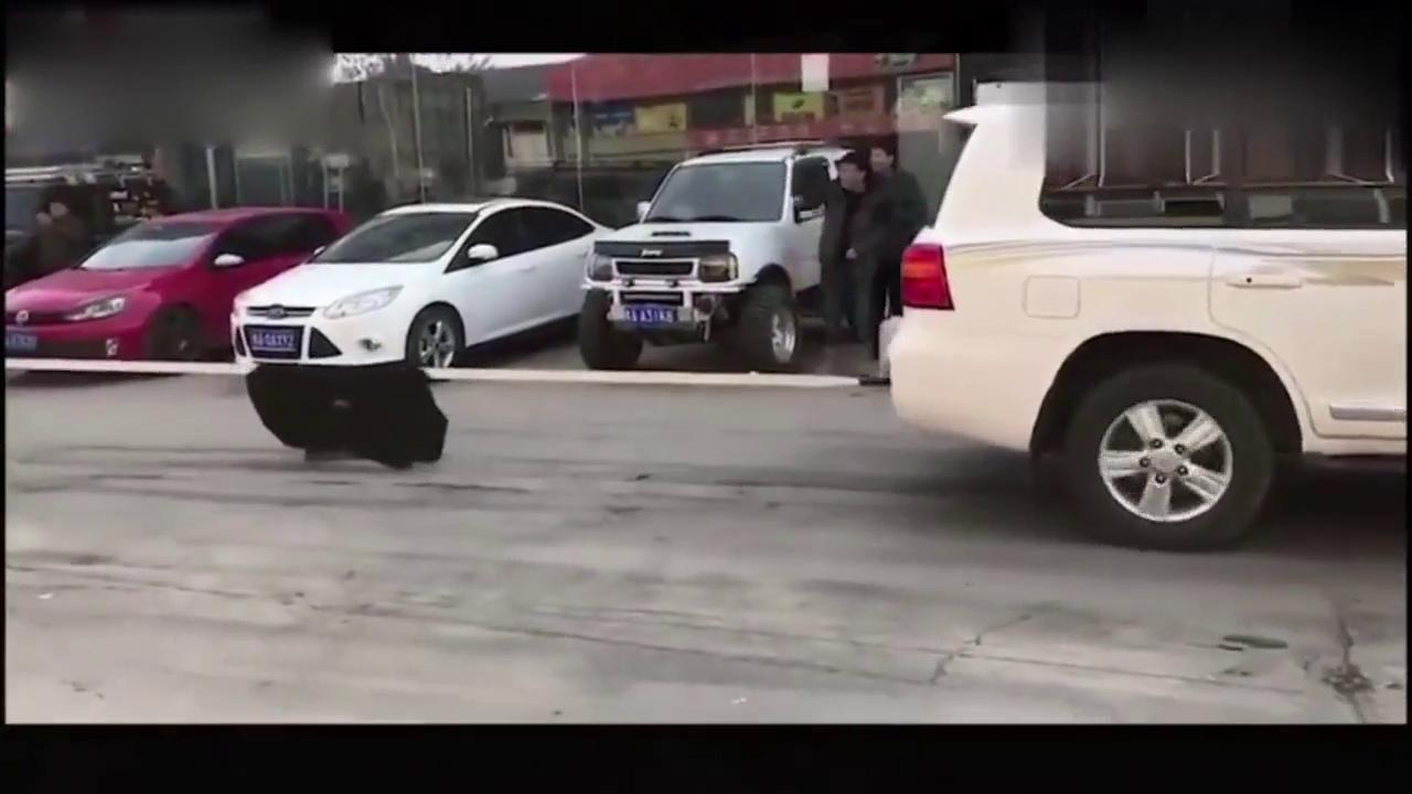 视频:咯嘣一声,乐途车主又得去趟修理店了