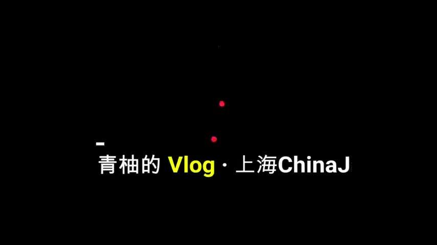 青柚的Vlog去参加上海的ChinaJoy这次终于露脸跑不了了