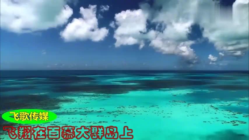 飞歌传媒带着西瓜去自驾百慕大群岛美景真是令人流连忘返