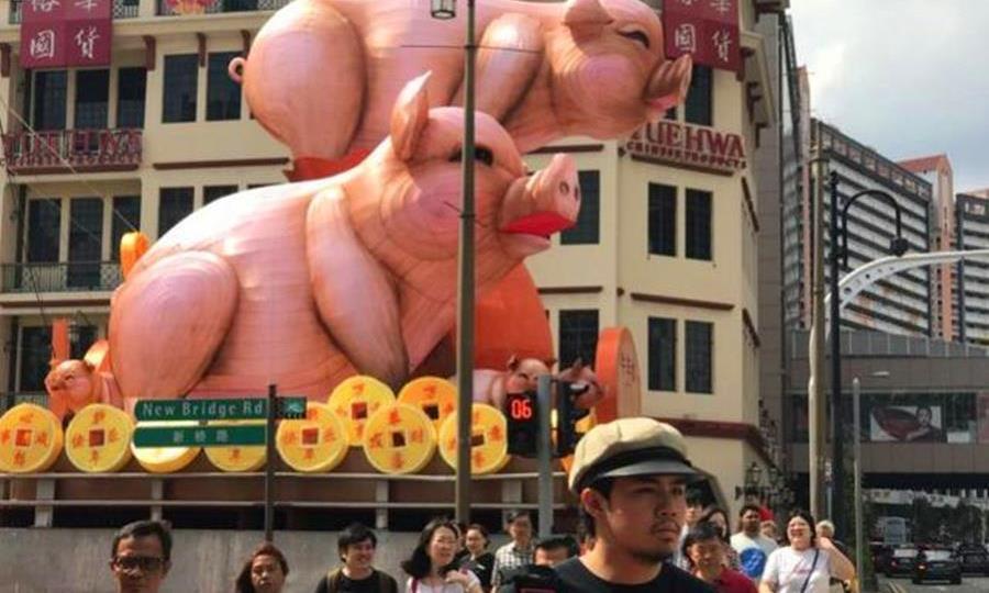 新加坡的猪年彩灯太丑,遭游客抨击:适合放屠宰场