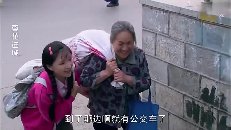 农村小伙在路边假扮孕妇骗钱母亲看到这一幕上去就是一巴掌