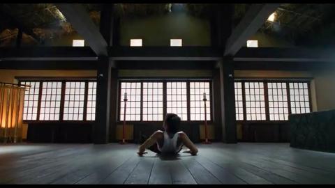 《红场飞龙》许冠杰嘴太毒被日本高手教训,李丽珍又多一玩伴