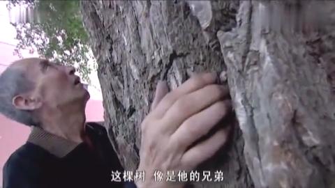 大漠高墙:犯人被关时间太久,出来后却对大树思念亲人
