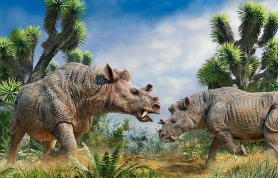 5种战力超群的远古生物,第3种有人认为仍然存活着
