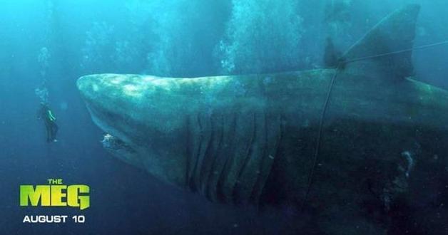 《巨齿鲨》这部电影告诉你,真正的商业大片,都具有哪些特征!