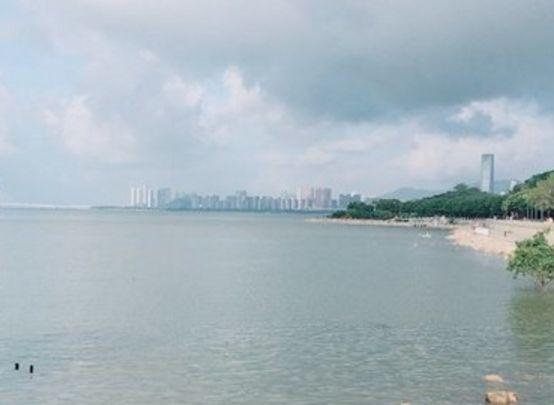 旅游:深圳湾公园——美丽的海滨休闲带,摄影者的天堂