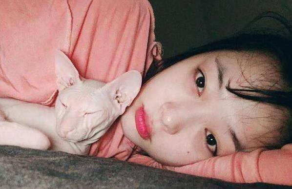 泪目!崔雪莉离去后,她的爱猫被最疼爱她的金希澈收养了