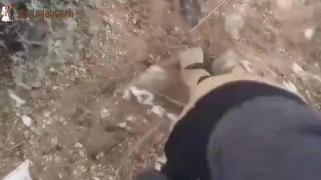 男子在荒地发现一块石头,拿起来认真观察,发现赚大发了