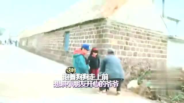 王诗龄痛哭流涕老爸王岳伦都没招了看见小狗突然就不哭了