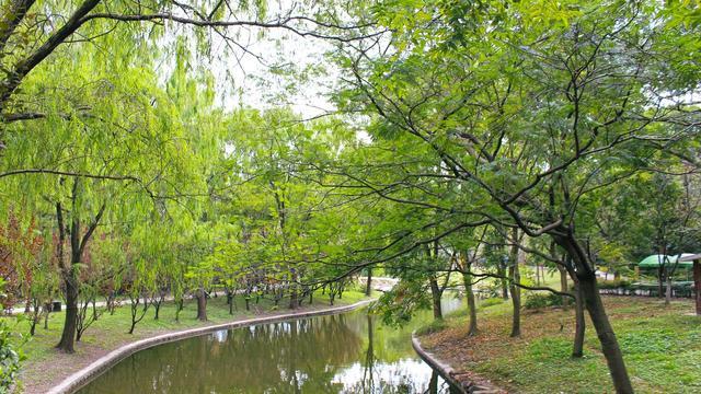 它是以森林为主要景观的特色公园,其南北园风格各异,风景优美