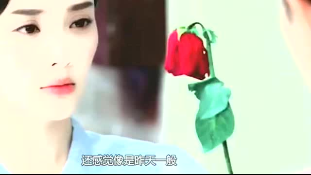 杨澜质问李小璐你过去不喜欢贾乃亮吧李小璐脱口回答是的