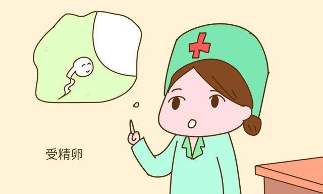 医生:找准排卵期+合适的时间同房,怀孕会事半功倍