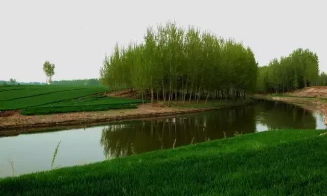 新乡故事:卫河也是大运河文化遗产