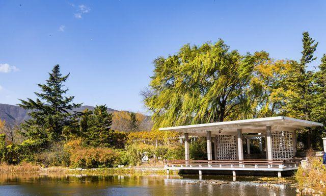 北京:金秋时节,中科院植物园五彩斑斓,层林尽染、美不胜收