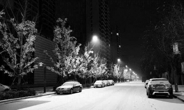 """山东一场大雪,揭开新能源汽车""""遮羞布"""",车主:真想砸了它"""