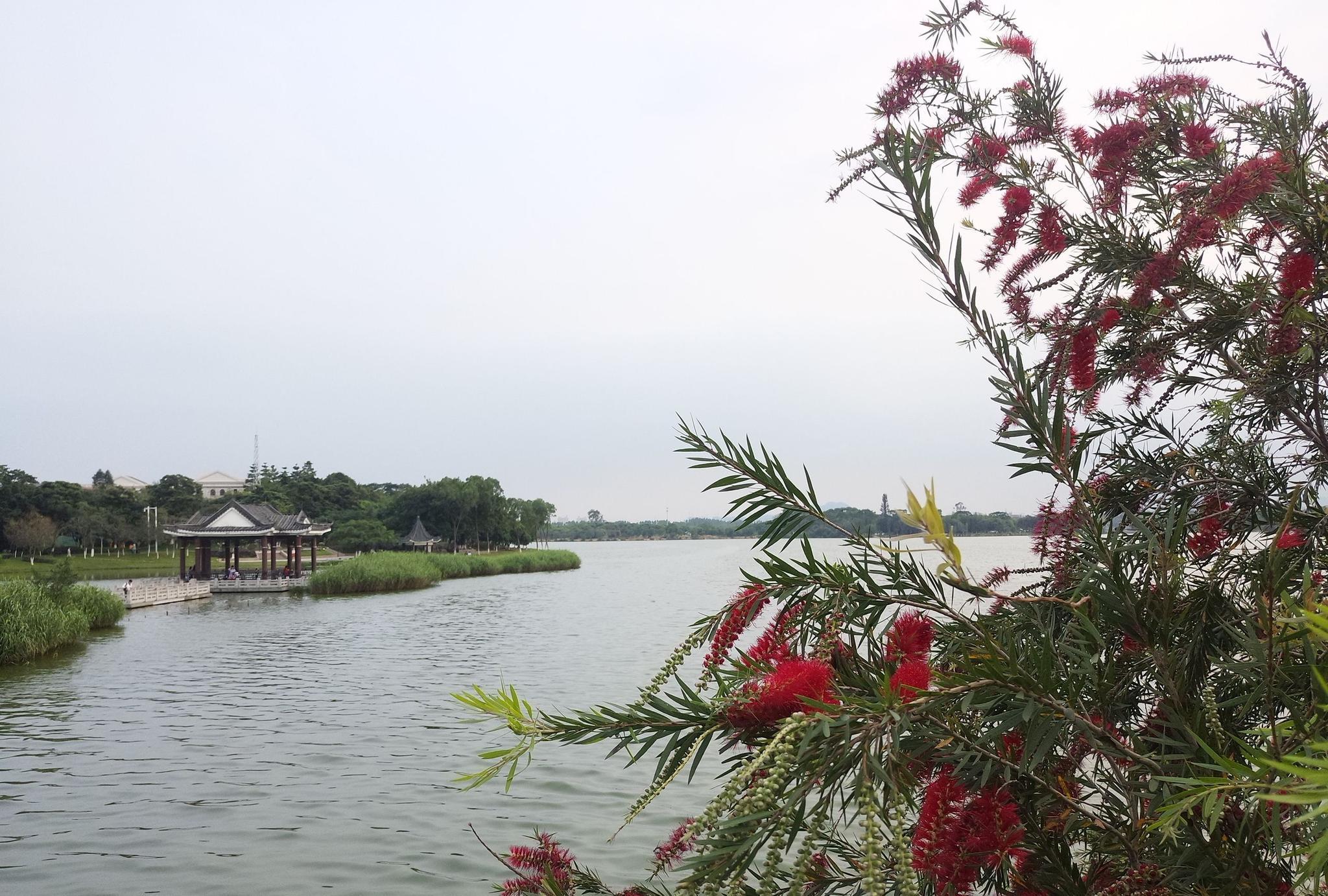 松山湖公园风景区