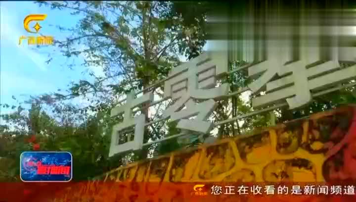 2019年奔跑吧,广西生态马拉松系列赛开跑