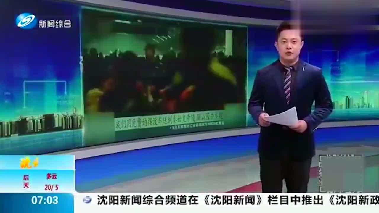 全都是人!游客数量创历年之最,陕西兵马俑延长开放时间