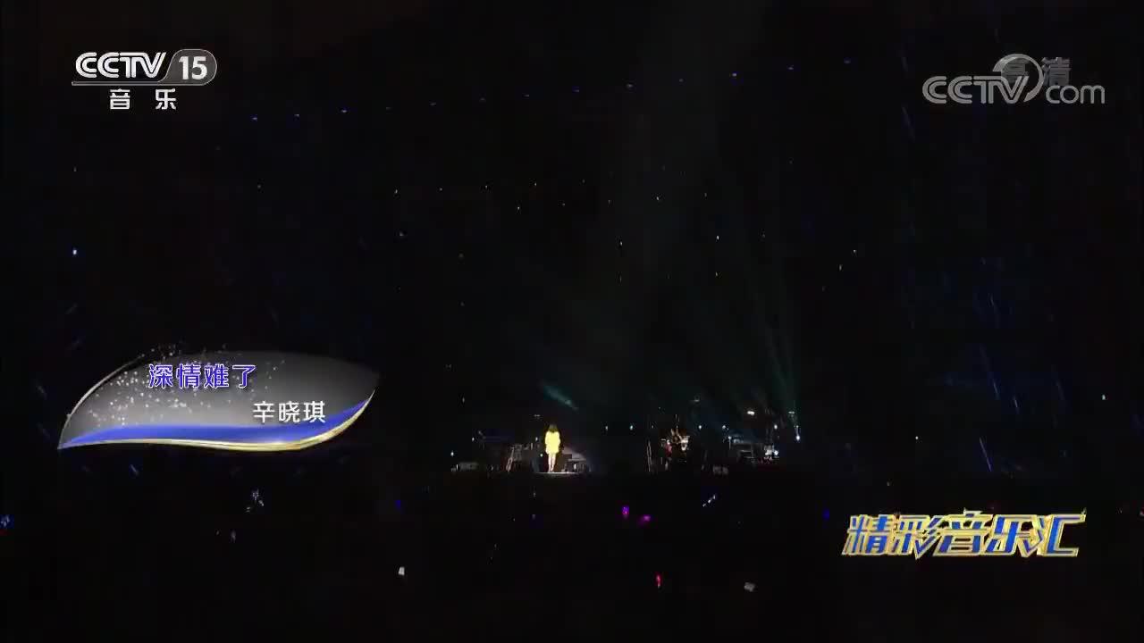 辛晓琪演唱深情难了歌词凄美令人动容百听不厌