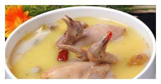 鸽子的几种做法,肉质鲜美汤汁香浓,制作还超简单