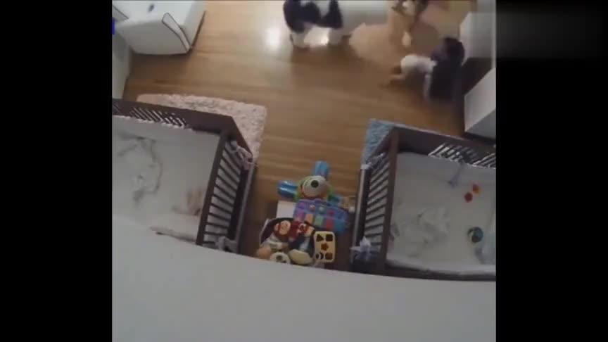 小宝宝从柜子上滚下来,妈妈还没反应过来呢,哥哥一个飞扑救下!